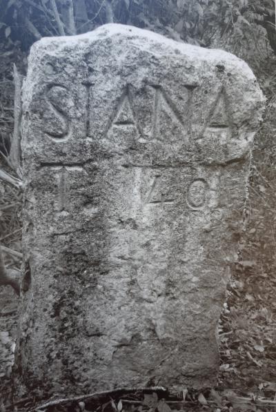 sijana-past2